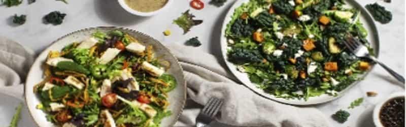 Salads Here