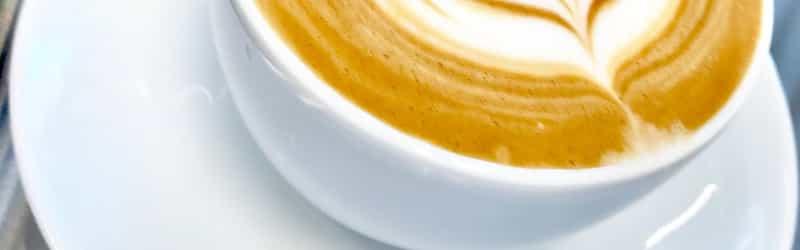 Blue Donkey Craft Coffee