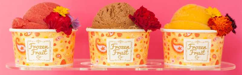 Frozen Fruit Co