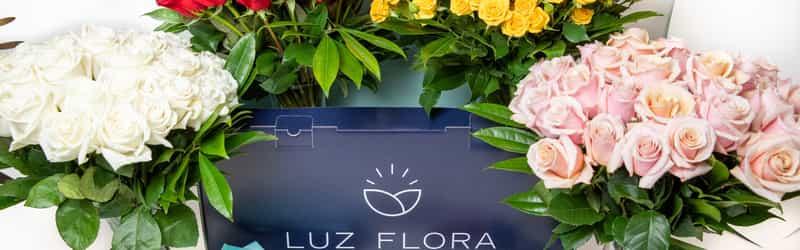 Luz Flora