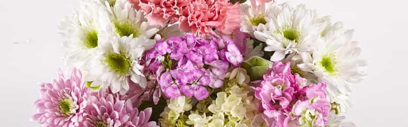 D & J FLOWERS INC