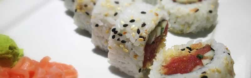 O.E.C. Japanese Sushi & Hibachi