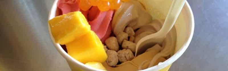 Honeymoon Frozen Yogurt